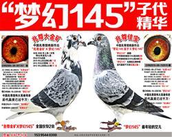 """苍白王牌""""梦幻145""""梦幻组合(九)"""