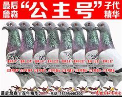 """詹森原舍麦克斯冬日男孩""""公主号""""子代"""