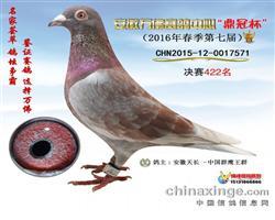 群鹰红狐-422名万福公棚