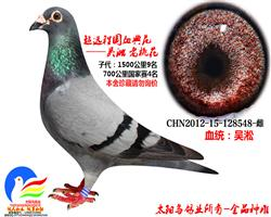 吴淞老桃花548 金品种雌