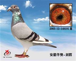 2003-12-148191