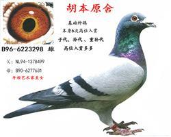 胡本原舍298