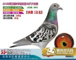 郭氏天马004合作鸽友大海拍回
