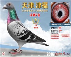 天津津福公棚决赛七名(拍出)