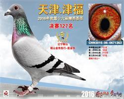 天津津福决赛127名