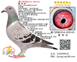 厦门杯南2016-000145