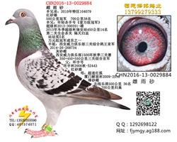 CHN2016-13-0029884