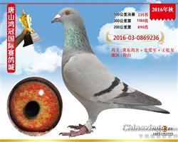 唐山鸿冠公棚决赛235