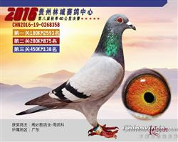 贵州林城公棚138位