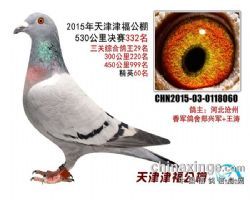 2015津福332名