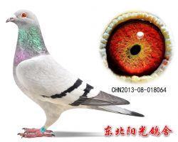 114、CHN2013-08-018064副本
