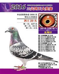2016年.秋季.丰台特比三关综合29名