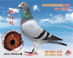 2010秋季总冠军    纯欣赏