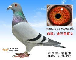 祥云轩58