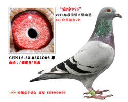 宸宇2096(已售)