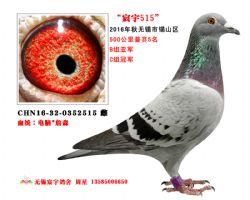 宸宇2515(已售)