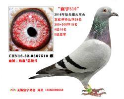 宸宇7510(已售)