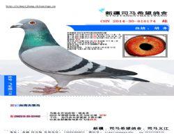 2014-30-616174  副本