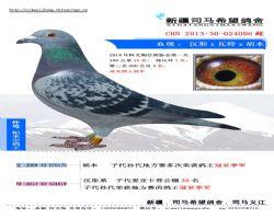 2013-30-024096 副本