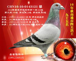 CHN16-10-0143121