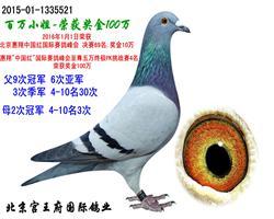 2016年北京惠翔-百万小姐