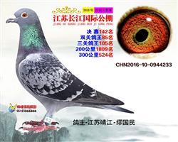 2016年江苏长江国际公棚142名