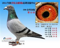 CHN2014-15-252154