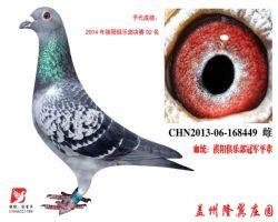 2012年祺阳俱乐部冠军平辈