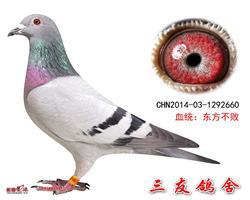 东方不败回血660