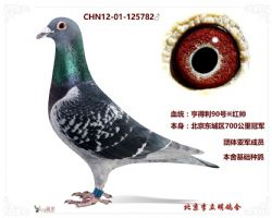 QQ图片20170521202946