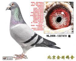 15 NL2008-1227419 雄