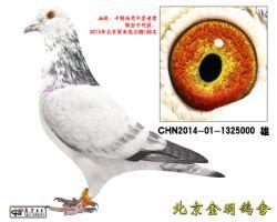 34 CHN2014-01-1325000 雄
