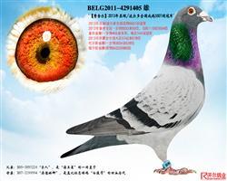 【�M舍��】:13年波��多全��冠�!
