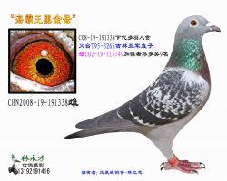 86 CHN2008-19-191338