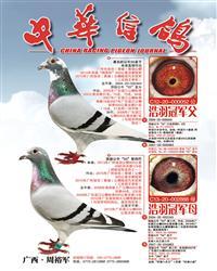 《中华信鸽》刊登广告