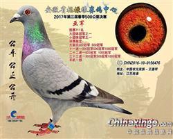 中国状元家族