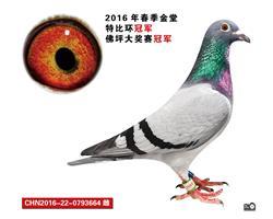 CHN2016-22-0793664