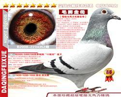 速霸龙梦幻17配对直子X胡本老索尼孙女