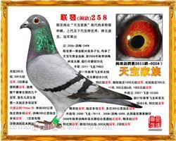 联发(闽幼)258