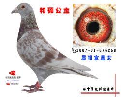2007-01-676268副本