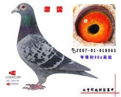 2007-01-018063副本