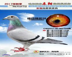 2017年东翔赛鸽俱乐部成绩鸽