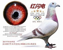 2017年北京惠翔公棚决赛69名祖父