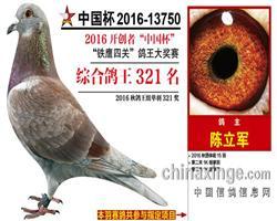 16年北京开创铁鹰综合321名
