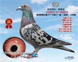 北京春辉公棚13名