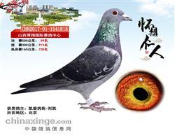 博翔国际决赛59名