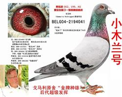 戈�R利原舍★小木�mB04-2194041