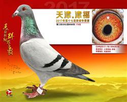 17天津津福公棚决赛178名