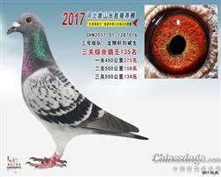 2017年唐山长胜十团队三关综合135名