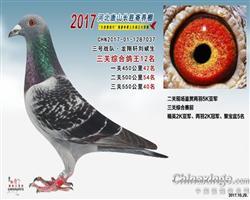 2017年唐山长胜十大团队三关综合12名